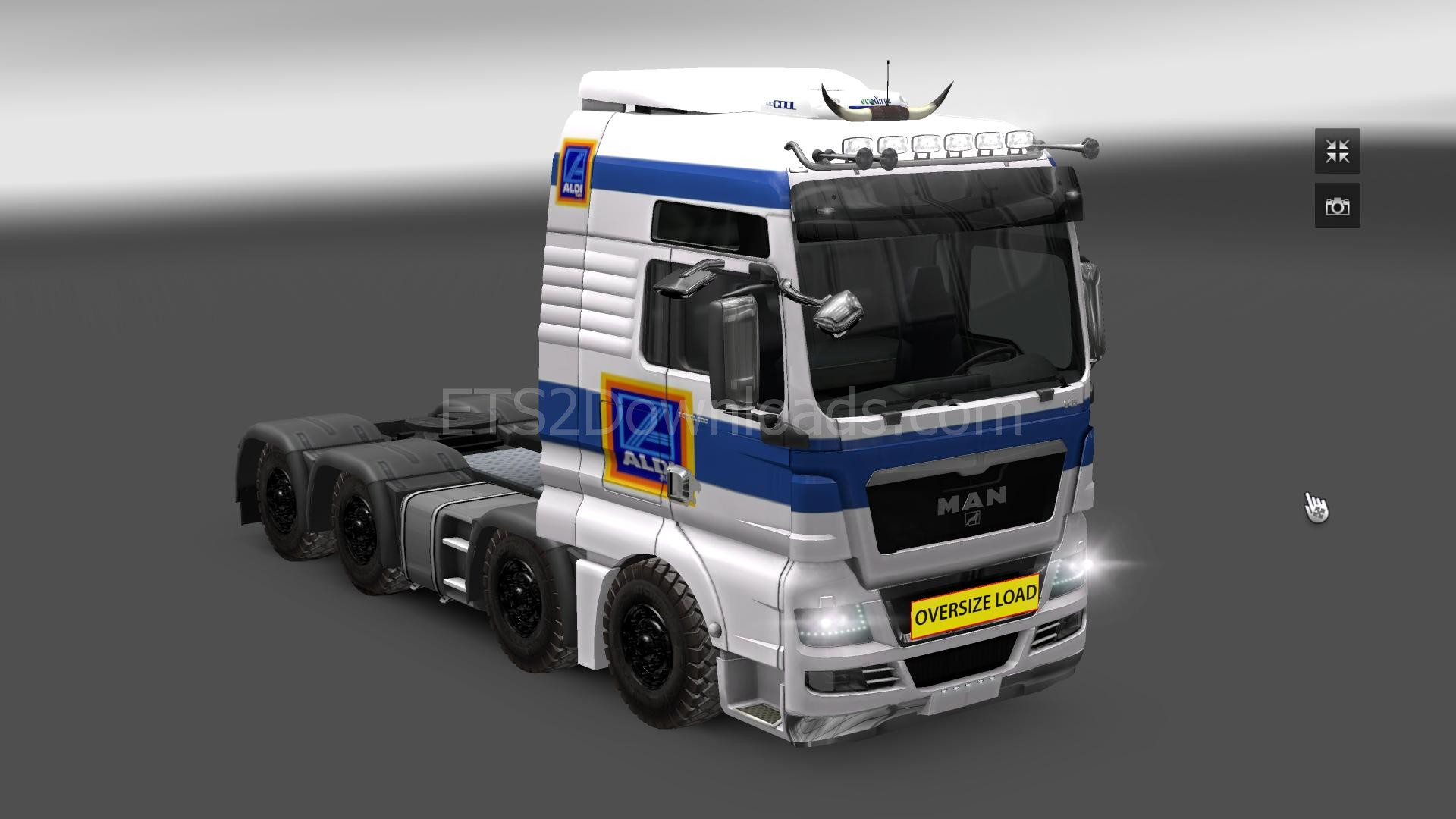 aldi-skin-for-man-ets2-1